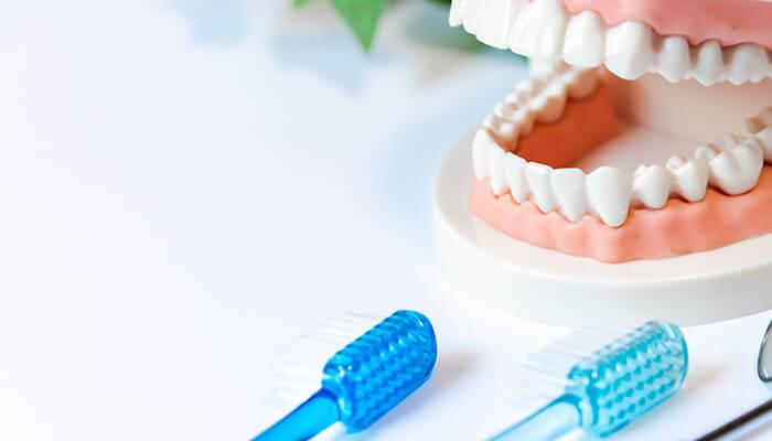 Step.05 消毒、歯みがき指導